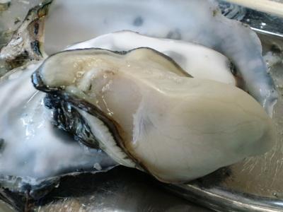 仙台旅行牡蠣食べ放題 2010・11・24 008.jpg