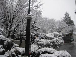 雪の草津温泉 001.jpg